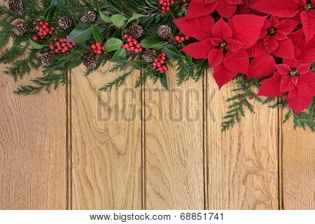 Poinsettia flower border on oak background with holly and winter greenery.