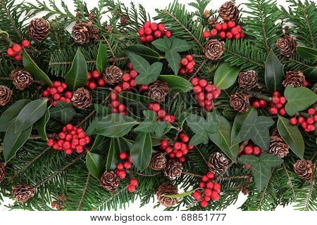 Winter and christmas flora with red berry holly, ivy, mistletoe and spruce fir over white background.