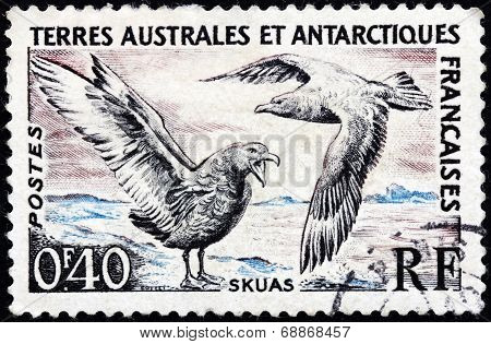 Skuas Stamp