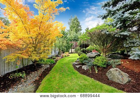 Backyard Landscape Design. Tropical Theme