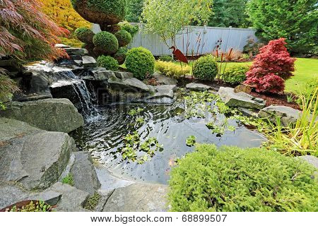 Home Tropical Garden With Pond