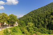 stock photo of armenia  - Photo of Haghartsin Monastery in Armenia  surrounded with forest - JPG