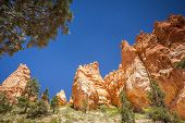 picture of hoodoo  - Hoodoos at Bryce Canyon National Park Utah USA - JPG