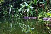 stock photo of negro  - Lake Balinsasayao in Dumaguete on Negros Island Philippines - JPG