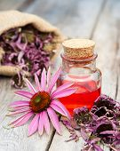 picture of essential oil  - essential oil in glass bottle and coneflower on wooden rustic table herbal medicine - JPG