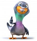 stock photo of pigeon  - Pigeon - JPG