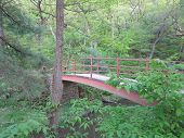 stock photo of wildcat  - Iron Walkway Bridge at Wildcat Canyon in Spring at Starved Rock - JPG