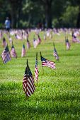 stock photo of veterans  - rows of flags on each grave of a Veterans Cemetery in Florida for Veterans day - JPG