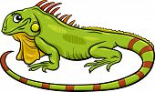 picture of lizards  - Cartoon Illustration of Funny Iguana Lizard Reptile Animal Character - JPG