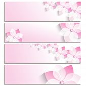 Постер, плакат: Set Of Banners With Blossoming Sakura Pink