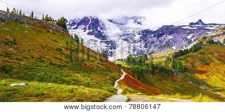 Trail at Mount Rainier in Washington, USA