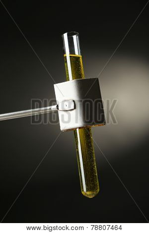 Laboratory glass test tube filled  color liquid held in specialized  clamp during  scientific experiment