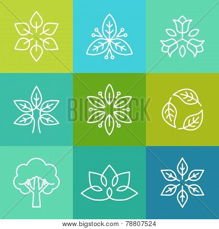 Vector Ecology And Organic Logos In Outline Style