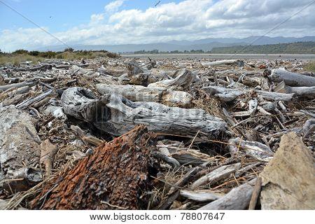 Drift Wood Piled Up On Karamea Beach, New Zealand.