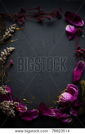 Flower Petals Frame
