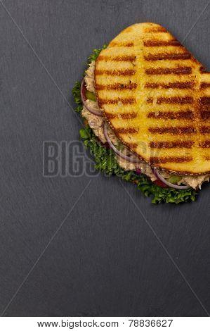 Tuna Panini Sandwich
