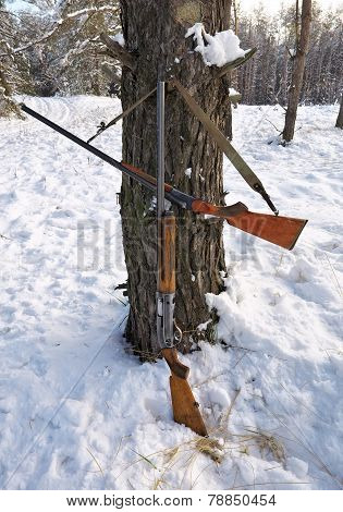 Hunting Guns In The Winter Forest. Winter Hunting.