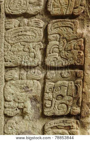 Mayan hieroglyphs, Copan, Guatemala