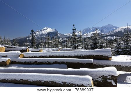 winter in tatras mountains in poland with heap of pieces of wood