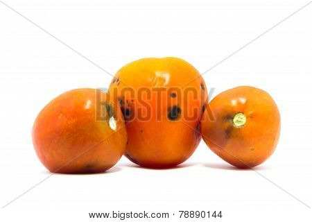 Old tomato on white background