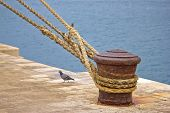 picture of bollard  - Rusty mooring bollard with ship ropes on Zadar docks - JPG