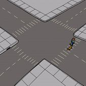 picture of pedestrian crossing  - Pedestrian crossing street at intersection with pet - JPG