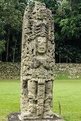 pic of carving  - Carved stone stella of the king in Copan - JPG