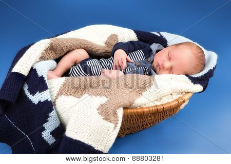 Newborn infant baby sleeping in a basket