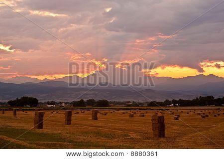Colorado Harvest Sunset