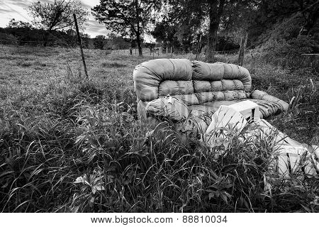 Abandoned Sofa And Chairs