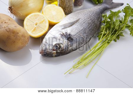 Raw Sea Bream Fish With Some Ingredients