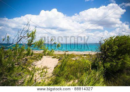 Wild Coast Of Sardinia