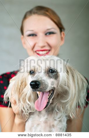 Girl And Chinese Crested Dog On Grey