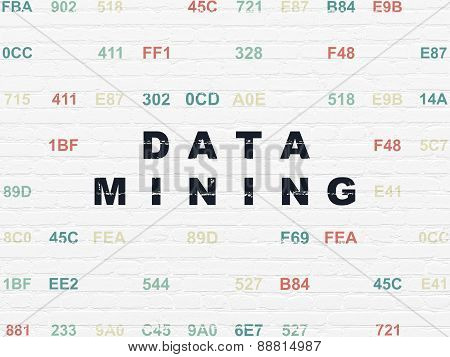 Information concept: Data Mining on wall background