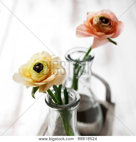 Ranunculus in pale yellow and orange