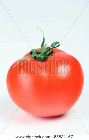Studio shot of tomato on white background