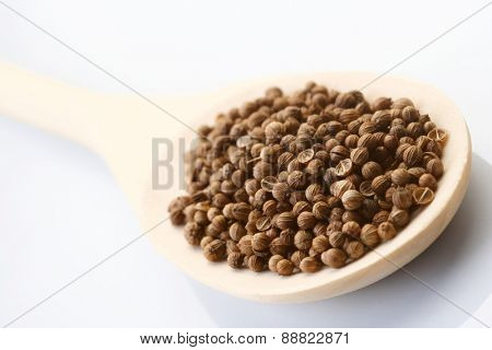 Mustard seeds on wooden spoon