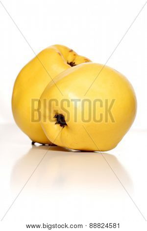 Studio shot of quinces on white background