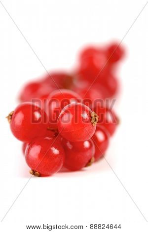 Redcurrants on white background - studio shot
