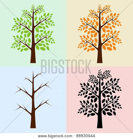 Vector Trees, Seasons