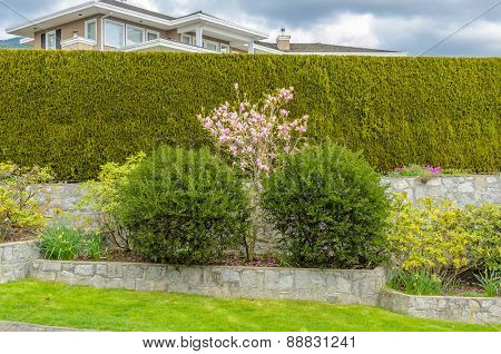 The background of stone wall with green grass
