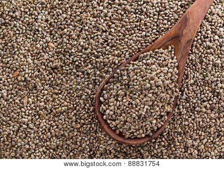 Hemp Seed Background