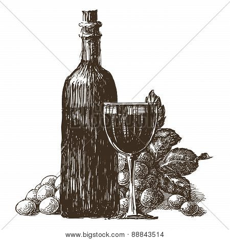 glass and bottle of wine on a white background. sketch