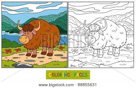 Coloring Book (yak)