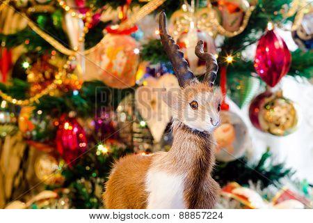 Christmas Fur Ram
