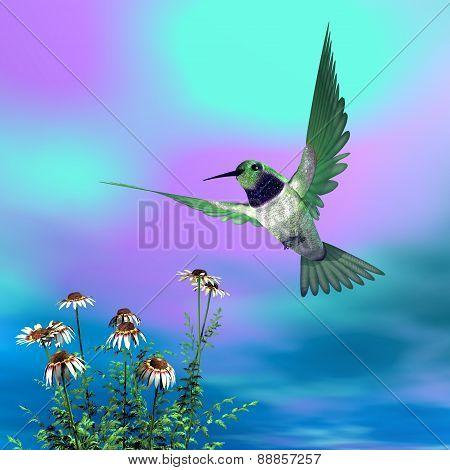 Black-chinned hummingbird - 3D render