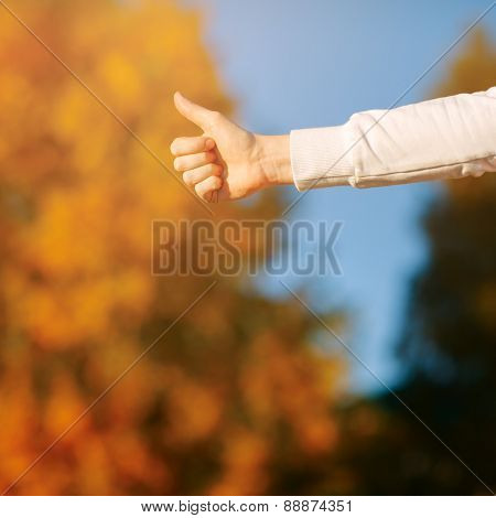 closeup showing thumbs up against the autumn sky and yellow leaves