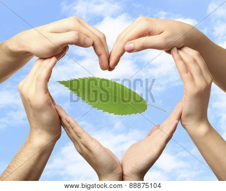 Hands with green leaf on sky background