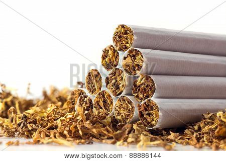 Cigarettes In Loose Tobacco, Close Up Against White