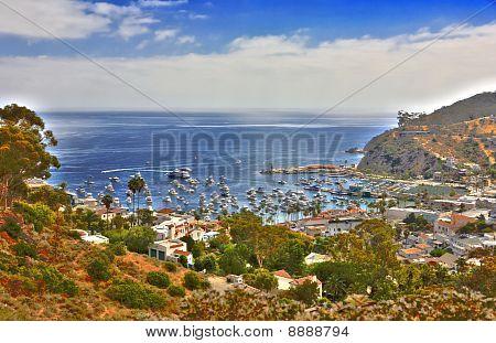 Hdr Image Of Avalon Santa Catalina